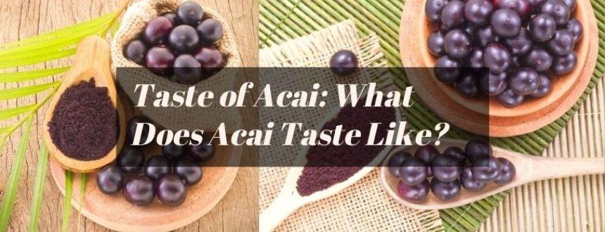 what does acai taste like